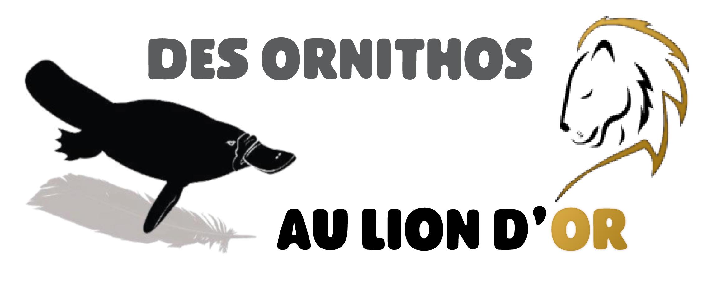 Des Ornithos Au Lion d'Or